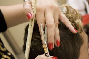 Предложение парикмахерам